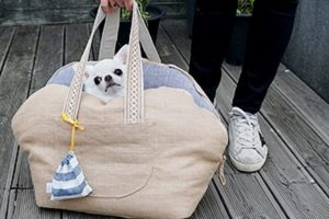 Understanding The Difference Between Fashionable Dog Carriers And Crates
