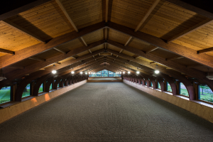 Tips for Planning a Riding Arena