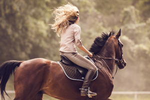 Why Horseback Riding Increases Your Wellbeing